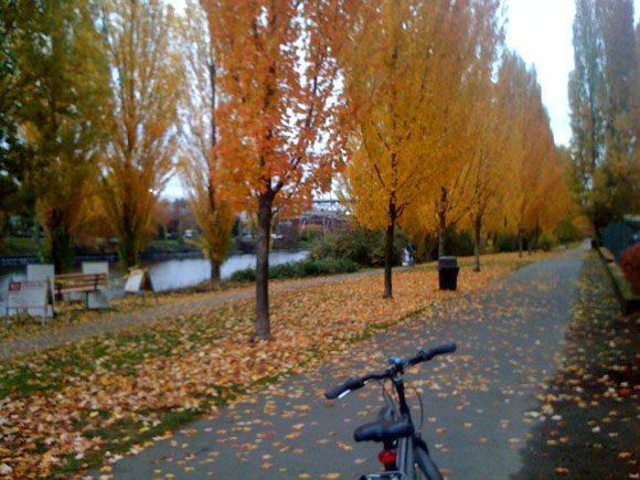 biking in autumn