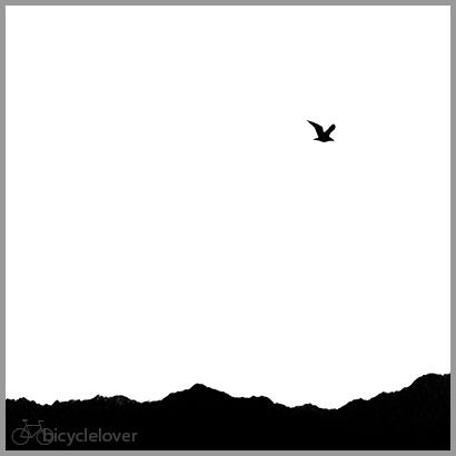 Bird and Mountains, black and white